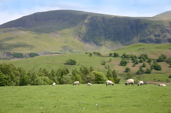 Our caravan park is very close to the Lake District